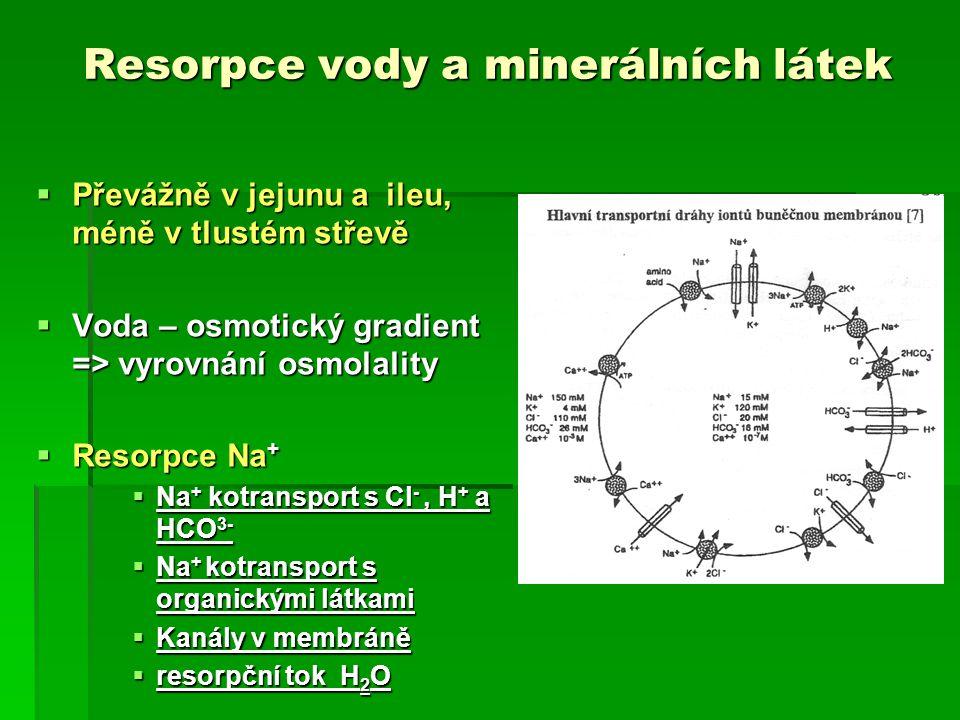 Resorpce vody a minerálních látek