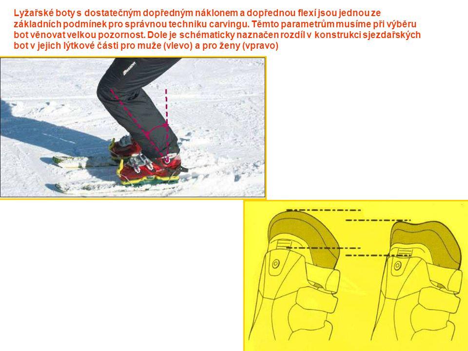 Lyžařské boty s dostatečným dopředným náklonem a dopřednou flexí jsou jednou ze základních podmínek pro správnou techniku carvingu.