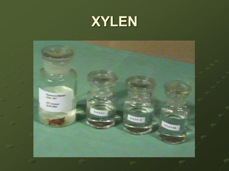 XYLEN