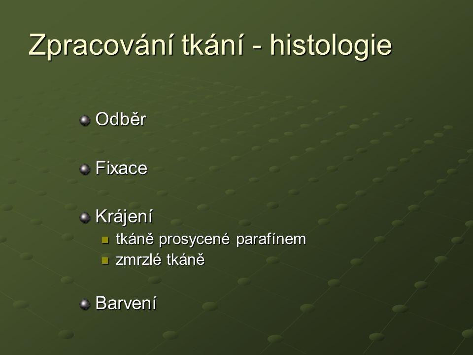 Zpracování tkání - histologie