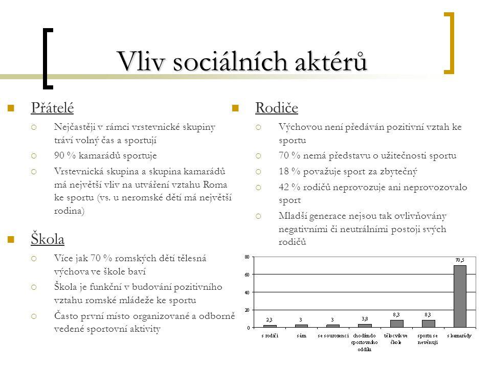 Vliv sociálních aktérů