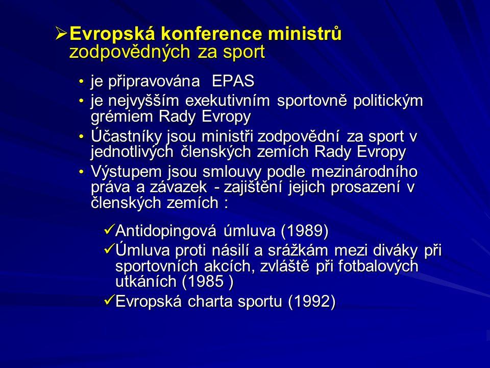 Evropská konference ministrů zodpovědných za sport