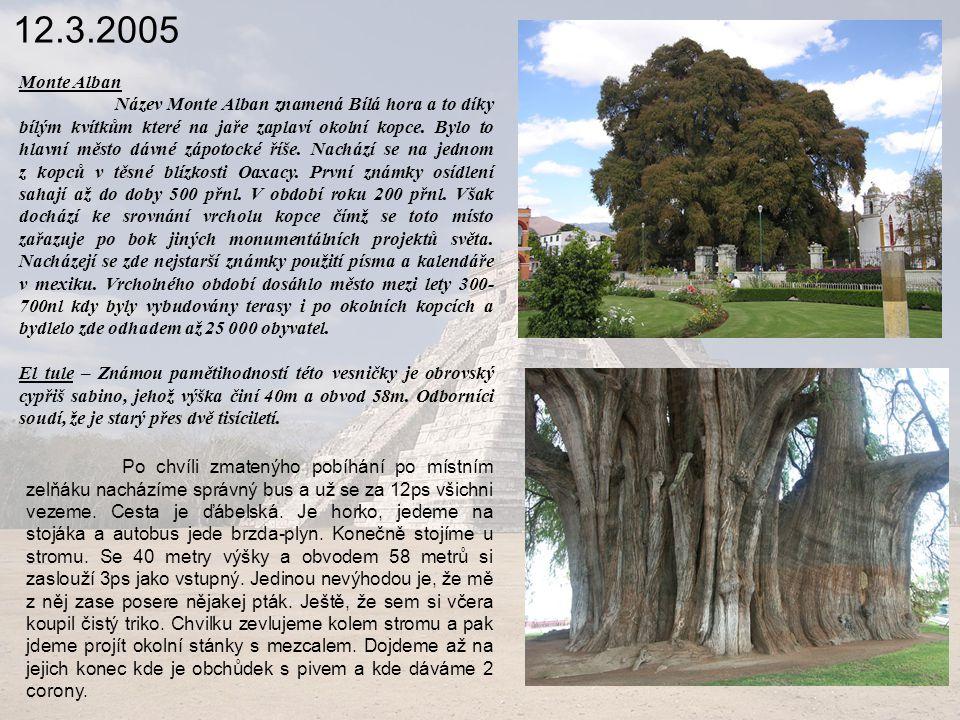 12.3.2005 Monte Alban.