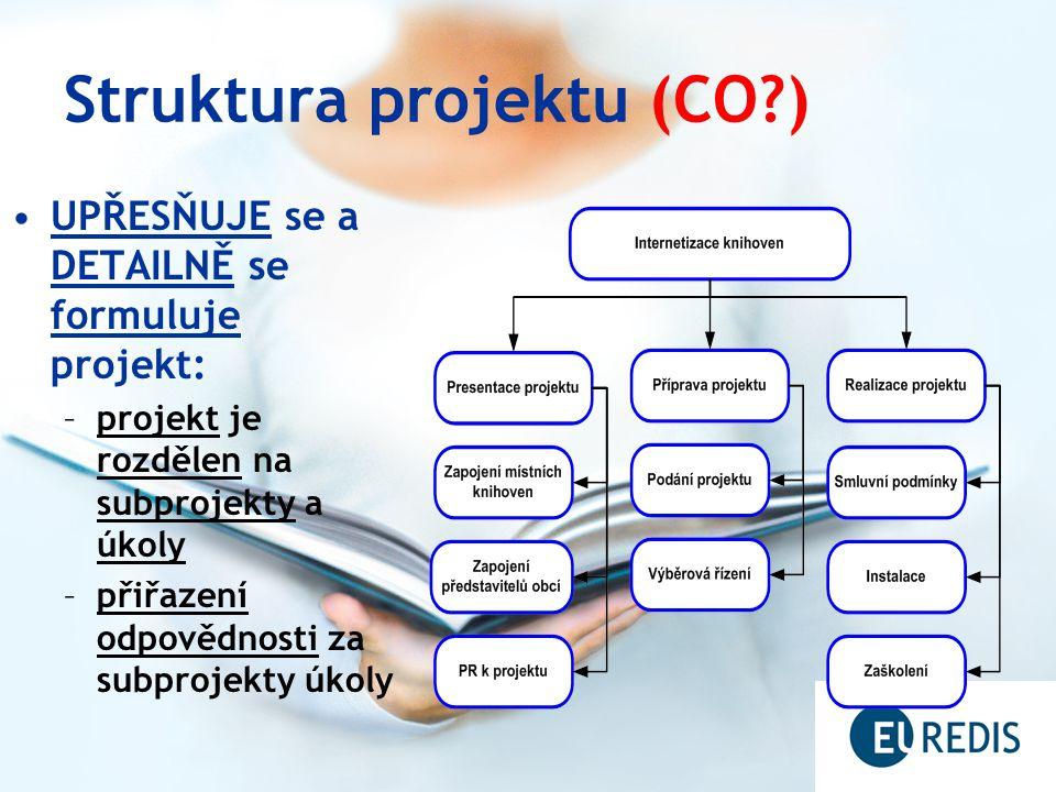 Struktura projektu (CO )