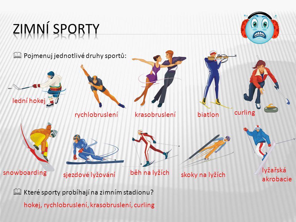 Zimní sporty  Pojmenuj jednotlivé druhy sportů:  Které sporty probíhají na zimním stadionu lední hokej.
