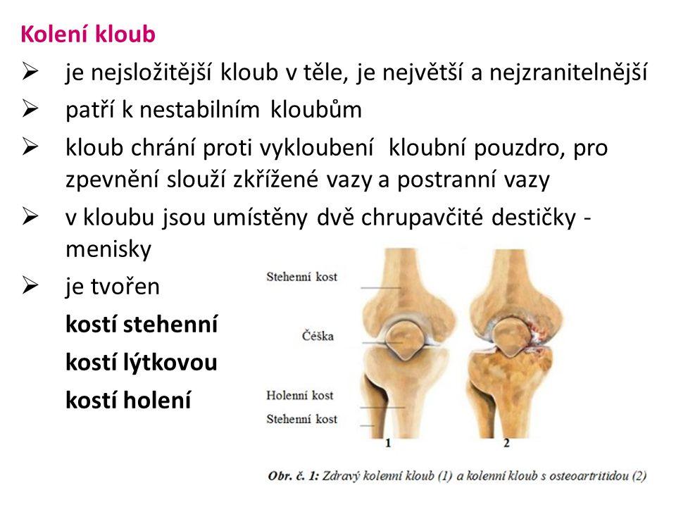 Kolení kloub je nejsložitější kloub v těle, je největší a nejzranitelnější. patří k nestabilním kloubům.