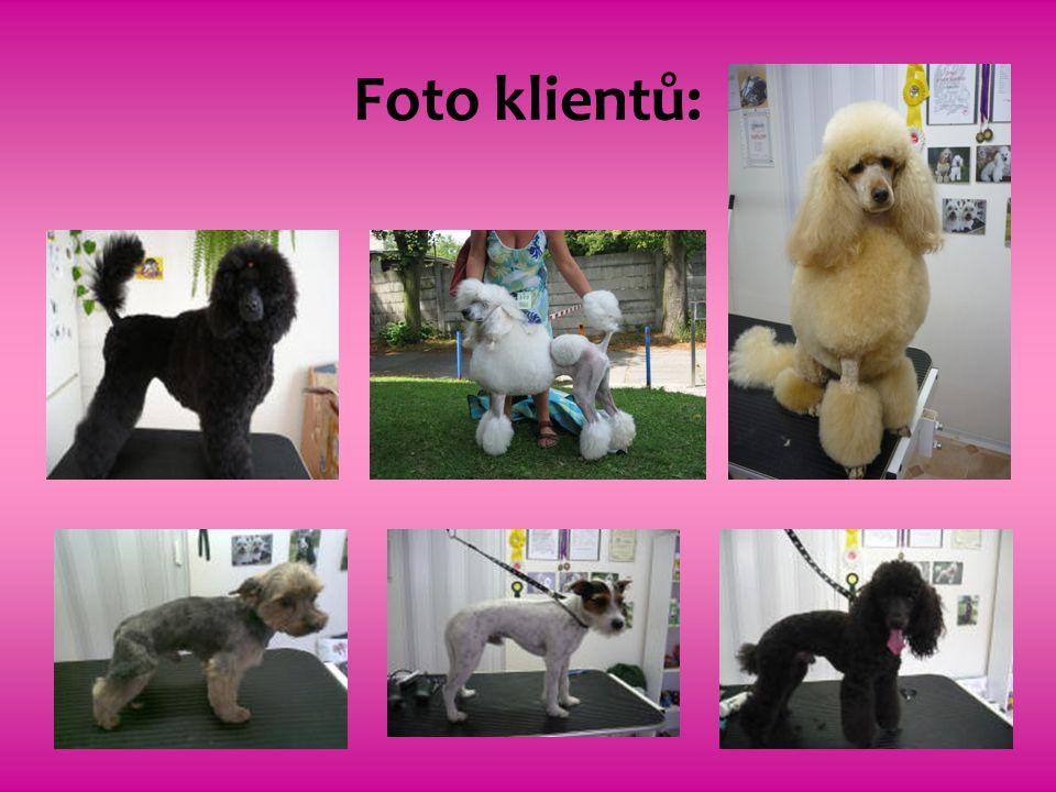 Foto klientů: