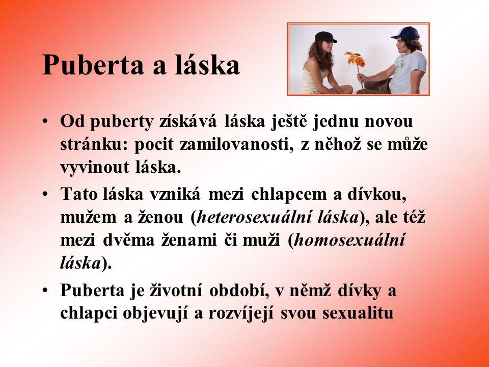 Puberta a láska Od puberty získává láska ještě jednu novou stránku: pocit zamilovanosti, z něhož se může vyvinout láska.