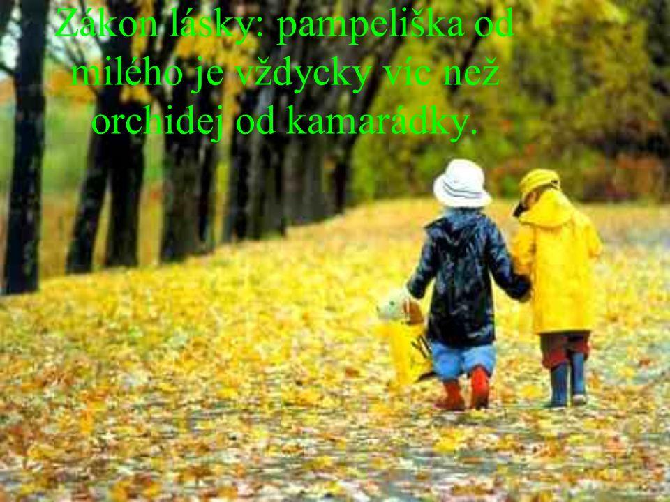 Zákon lásky: pampeliška od milého je vždycky víc než orchidej od kamarádky.