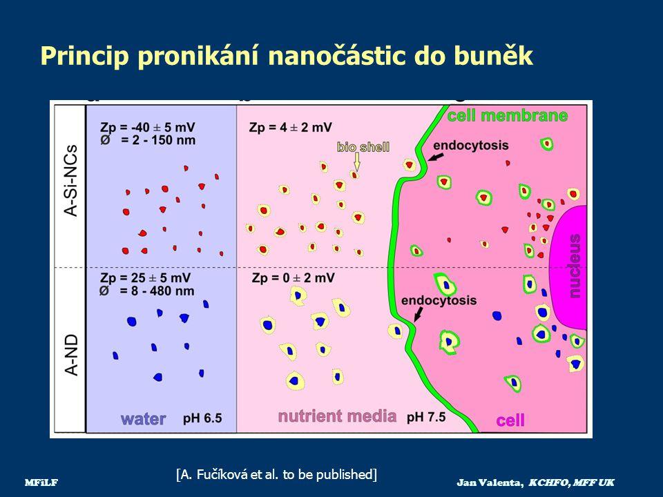 Princip pronikání nanočástic do buněk