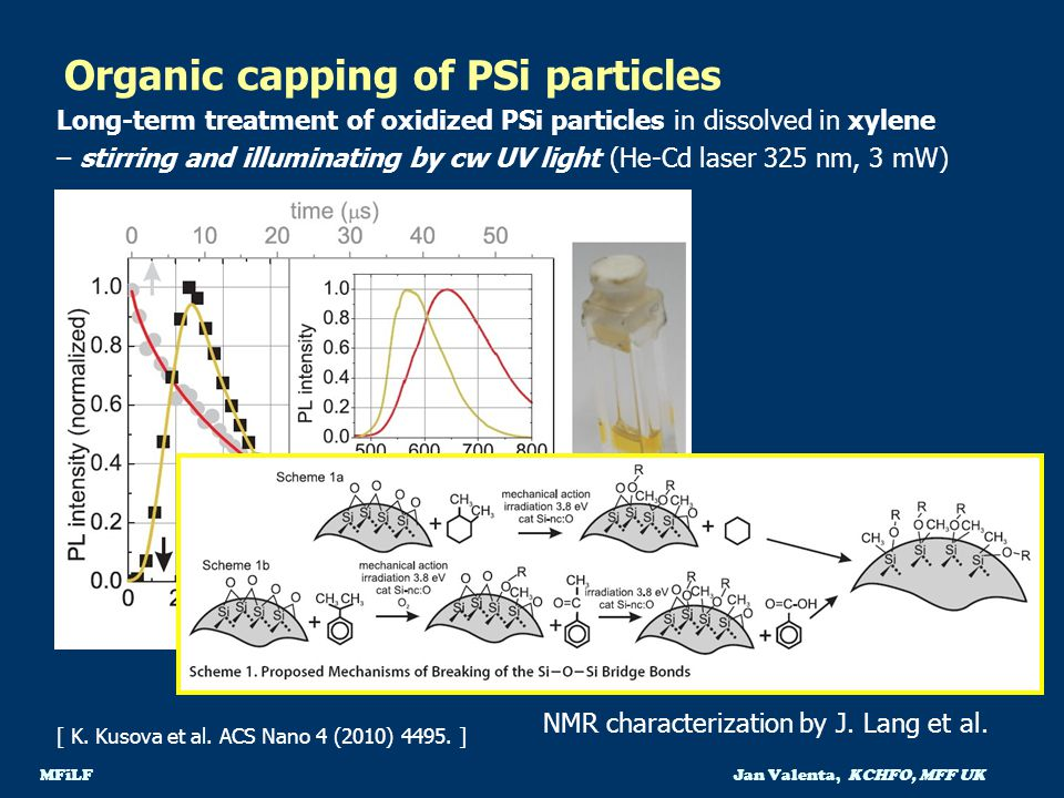 Organic capping of PSi particles