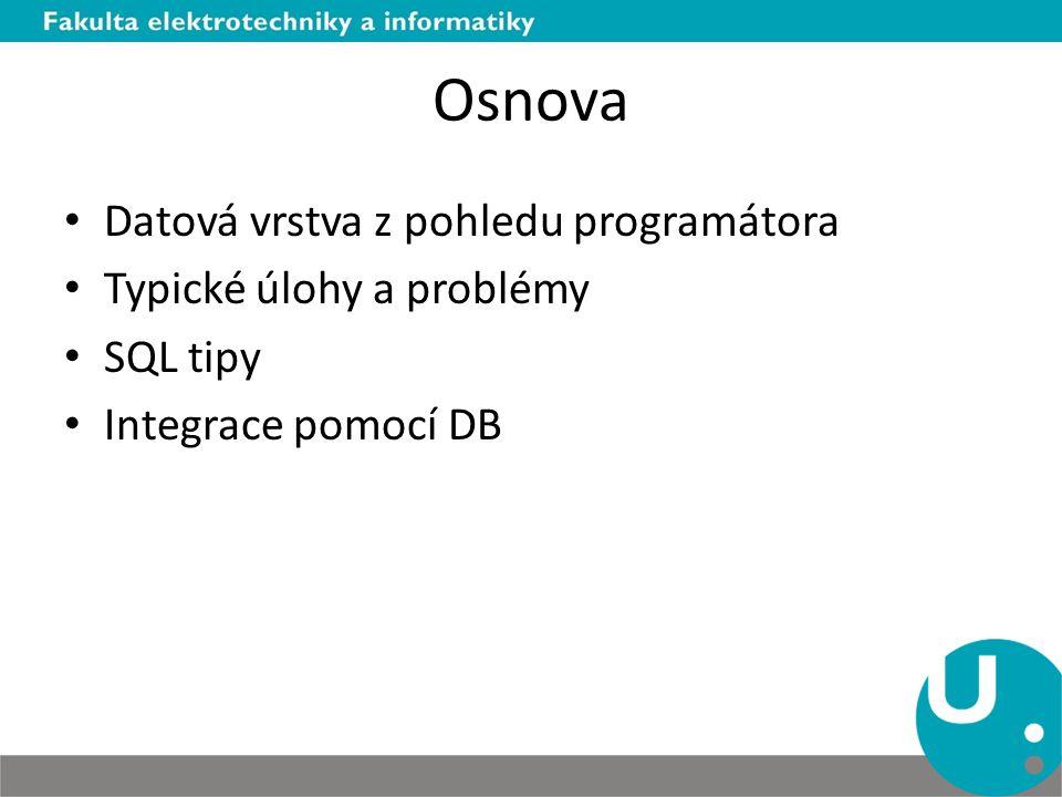 Osnova Datová vrstva z pohledu programátora Typické úlohy a problémy