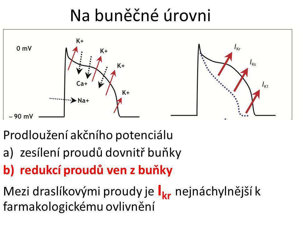 Na buněčné úrovni Prodloužení akčního potenciálu
