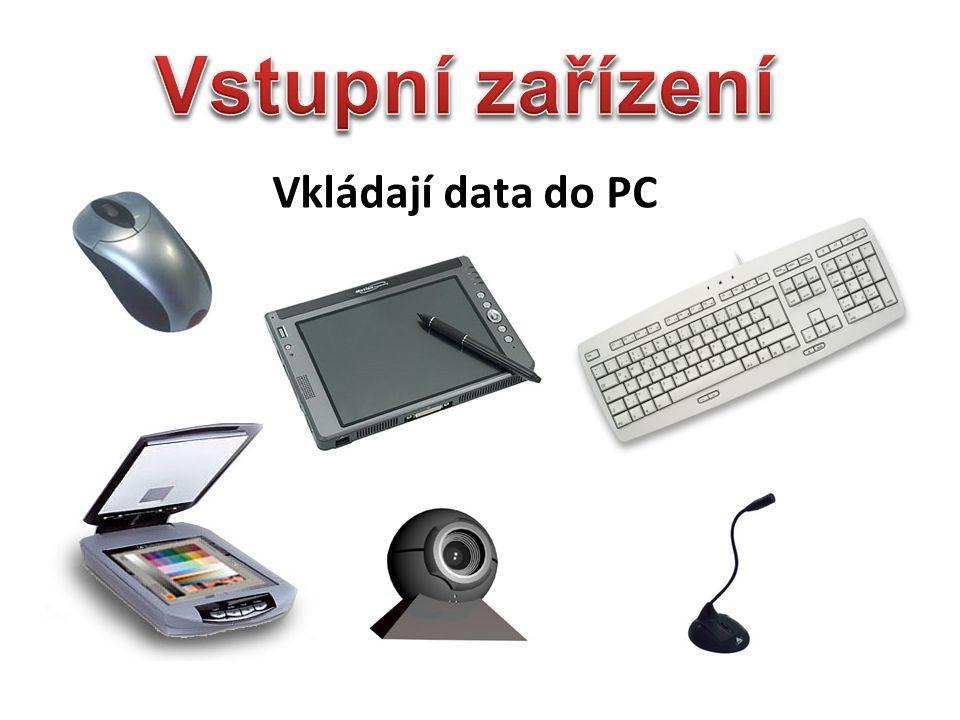 Vstupní zařízení Vkládají data do PC