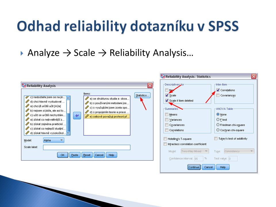 Odhad reliability dotazníku v SPSS