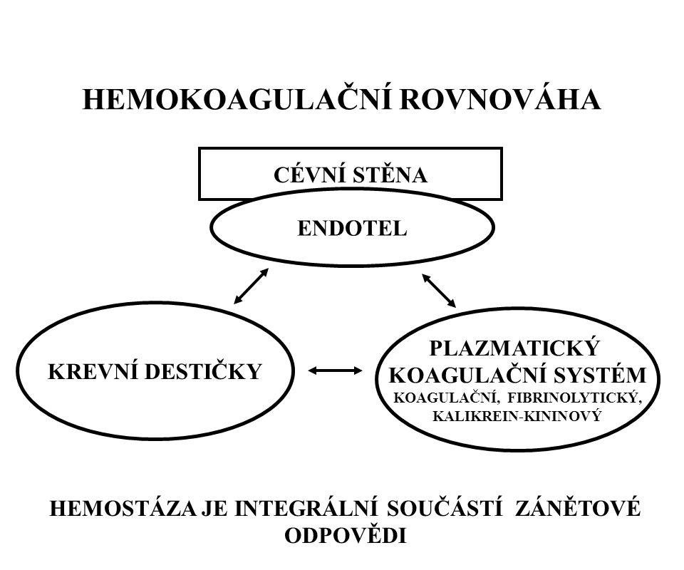 HEMOKOAGULAČNÍ ROVNOVÁHA