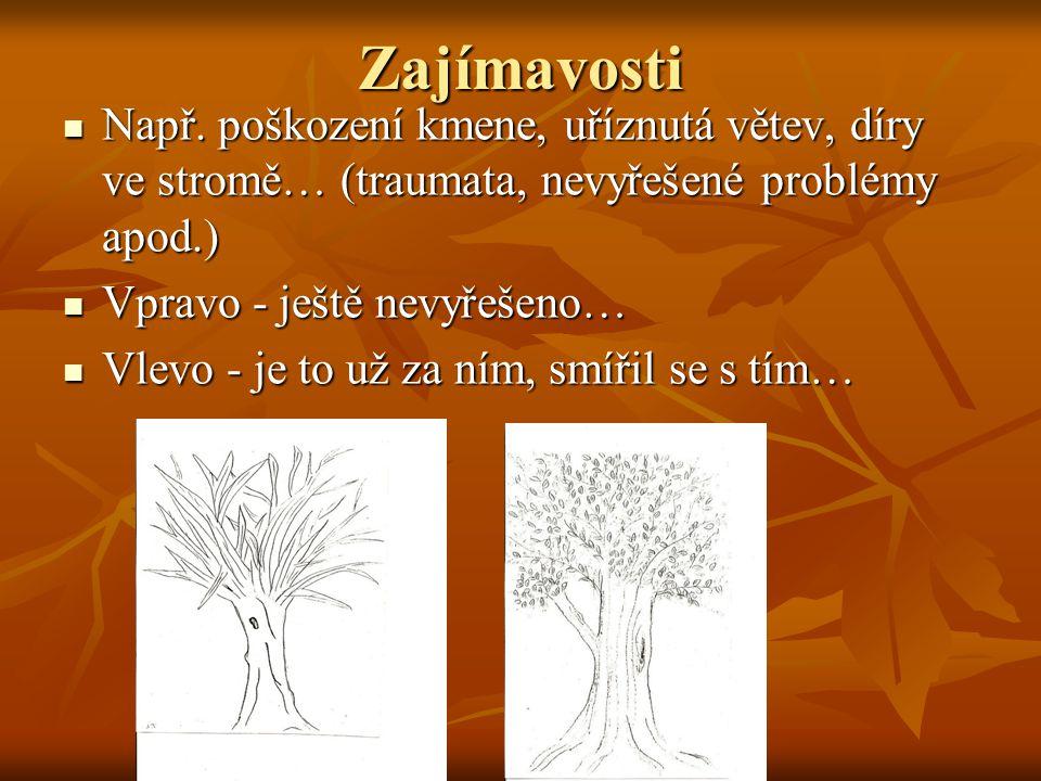 Zajímavosti Např. poškození kmene, uříznutá větev, díry ve stromě… (traumata, nevyřešené problémy apod.)