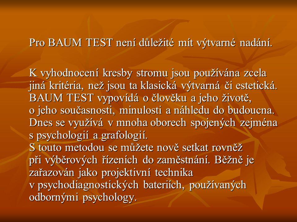 Pro BAUM TEST není důležité mít výtvarné nadání.