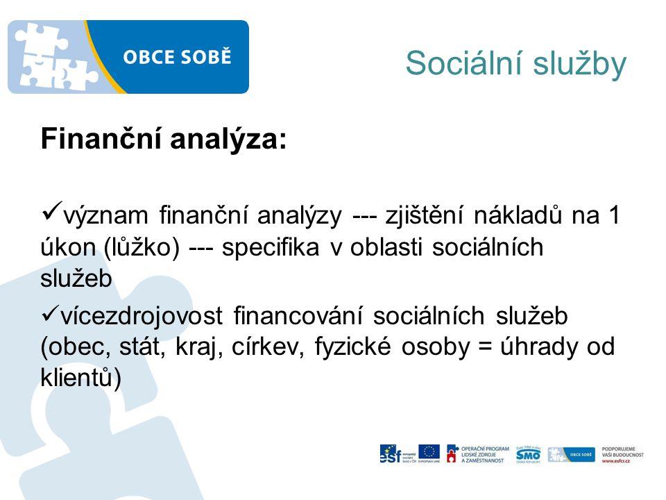 Sociální služby Finanční analýza: