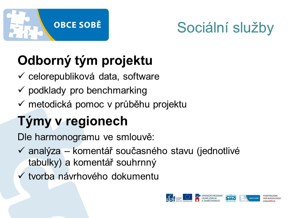 Sociální služby Odborný tým projektu Týmy v regionech