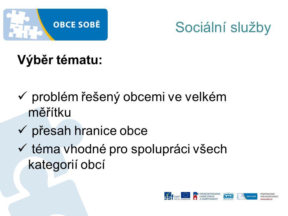 Sociální služby Výběr tématu: problém řešený obcemi ve velkém měřítku