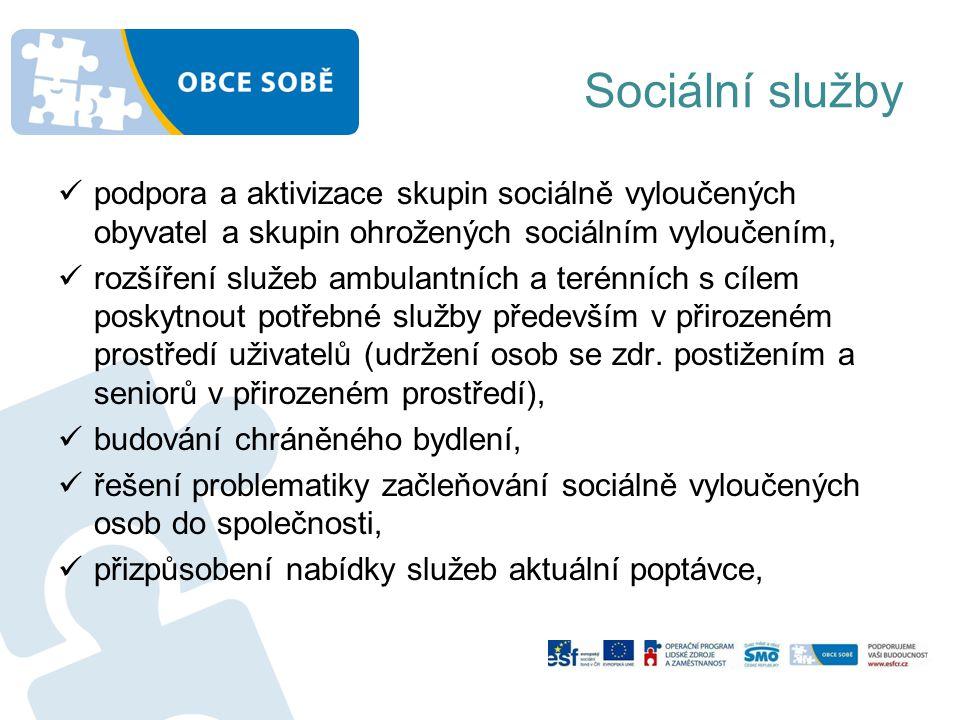 Sociální služby podpora a aktivizace skupin sociálně vyloučených obyvatel a skupin ohrožených sociálním vyloučením,
