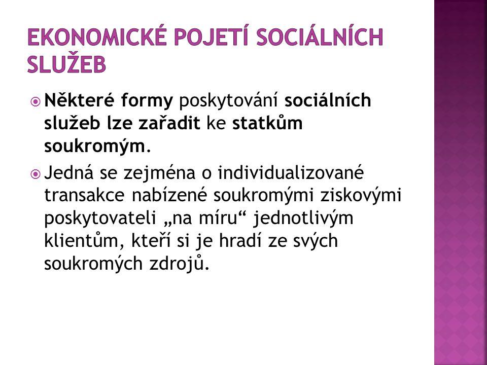 Ekonomické pojetí sociálních služeb