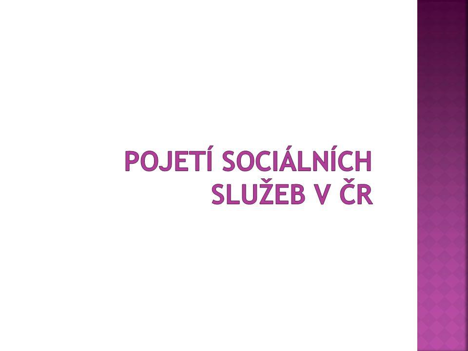 Pojetí sociálních služeb v ČR