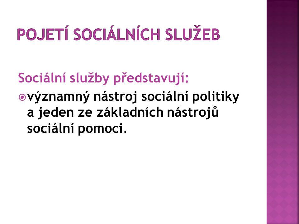 pojetí sociálních služeb
