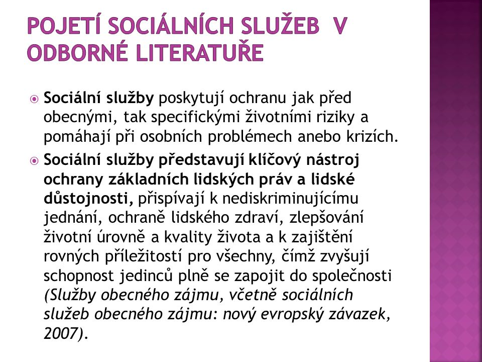 pojetí sociálních služeb v odborné literatuře