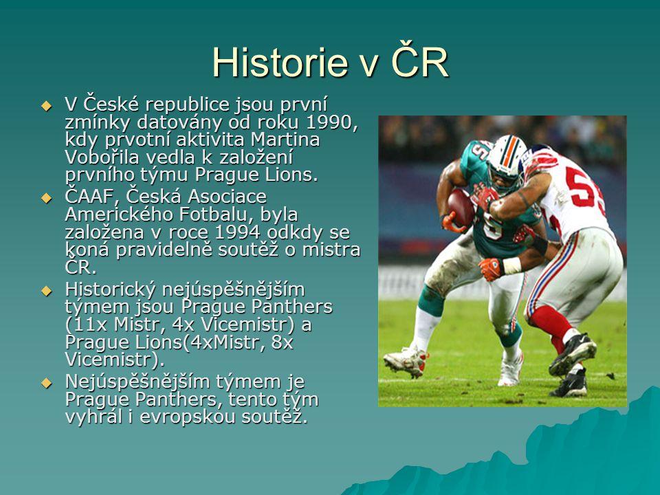 Historie v ČR