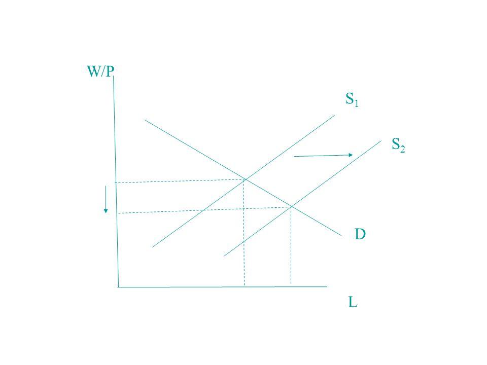 W/P S1 S2 D L