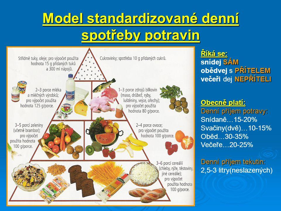 Model standardizované denní spotřeby potravin
