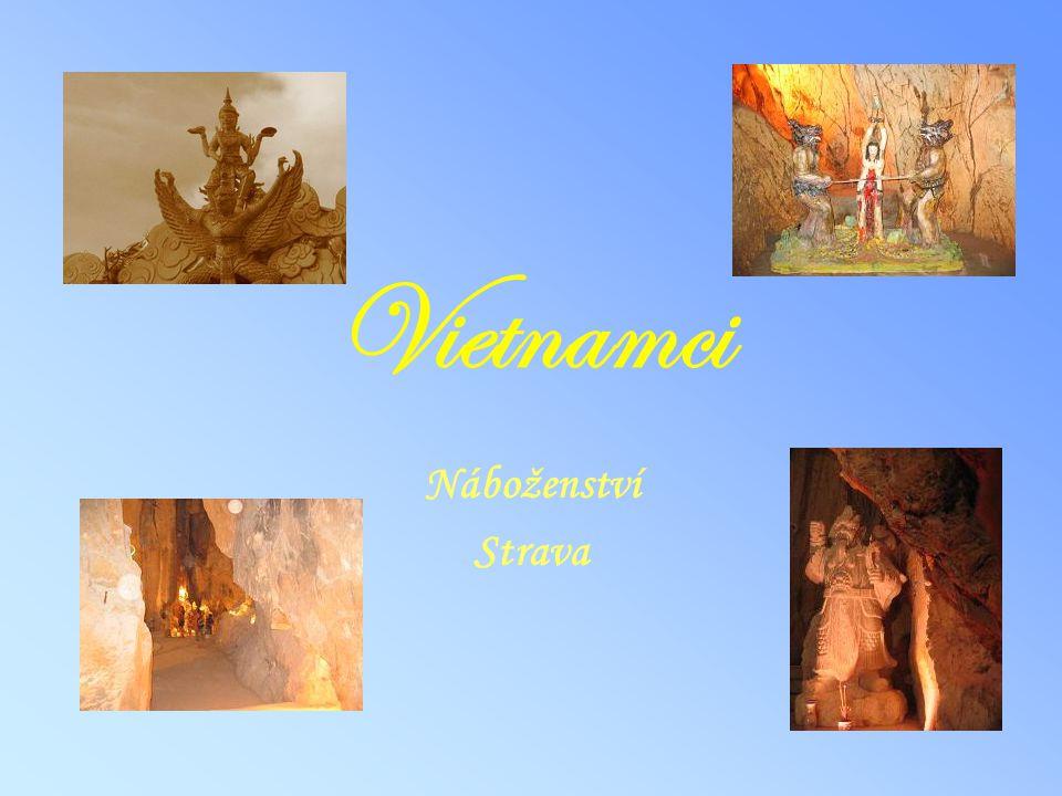 Vietnamci Náboženství Strava