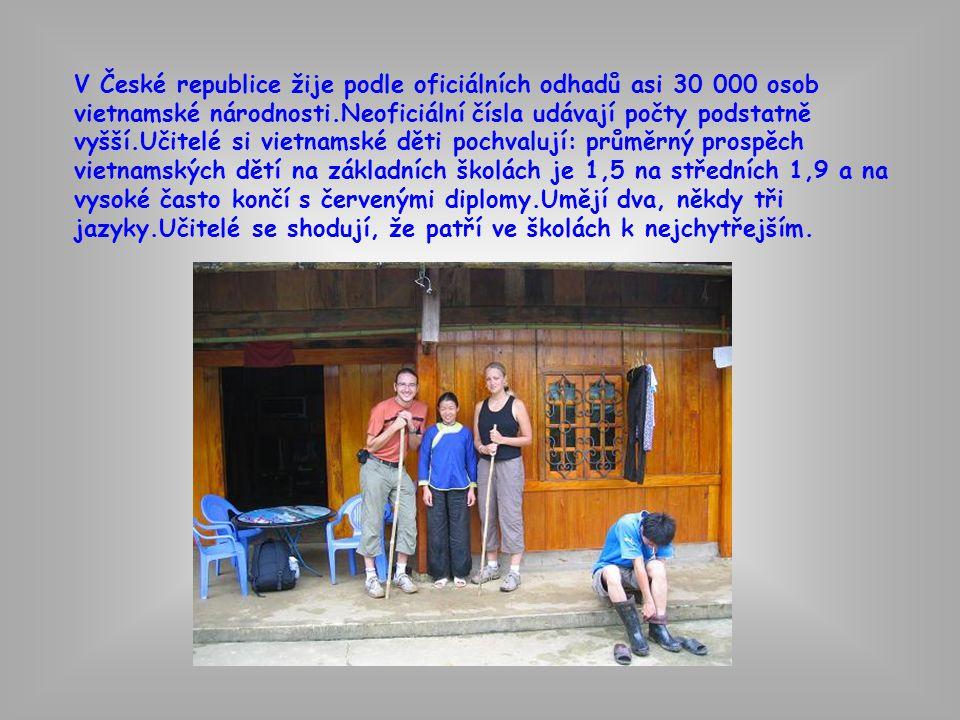 V České republice žije podle oficiálních odhadů asi 30 000 osob vietnamské národnosti.Neoficiální čísla udávají počty podstatně vyšší.Učitelé si vietnamské děti pochvalují: průměrný prospěch vietnamských dětí na základních školách je 1,5 na středních 1,9 a na vysoké často končí s červenými diplomy.Umějí dva, někdy tři jazyky.Učitelé se shodují, že patří ve školách k nejchytřejším.