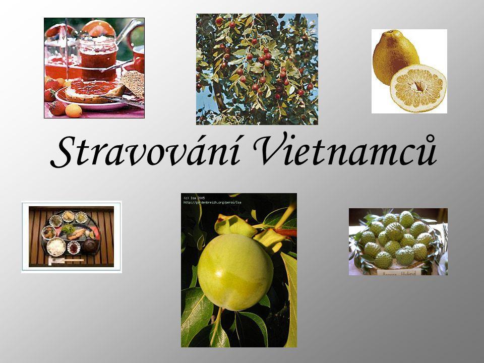 Stravování Vietnamců