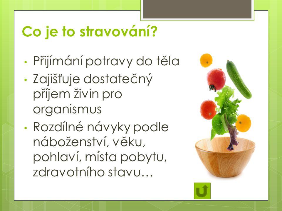 Co je to stravování Přijímání potravy do těla