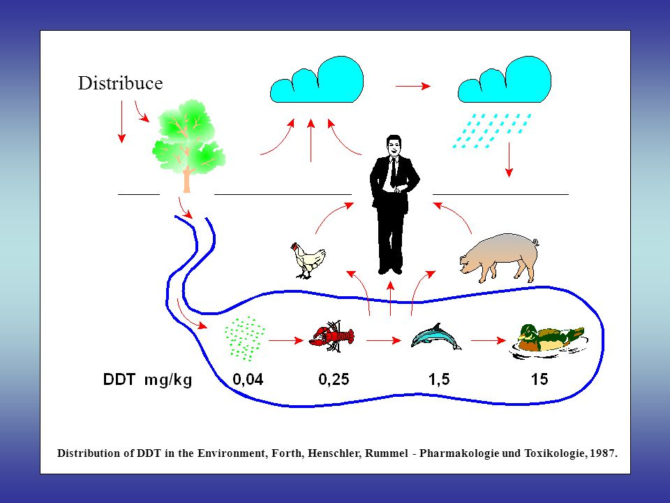 Distribuce Distribution of DDT in the Environment, Forth, Henschler, Rummel - Pharmakologie und Toxikologie, 1987.