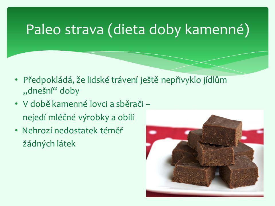 Paleo strava (dieta doby kamenné)