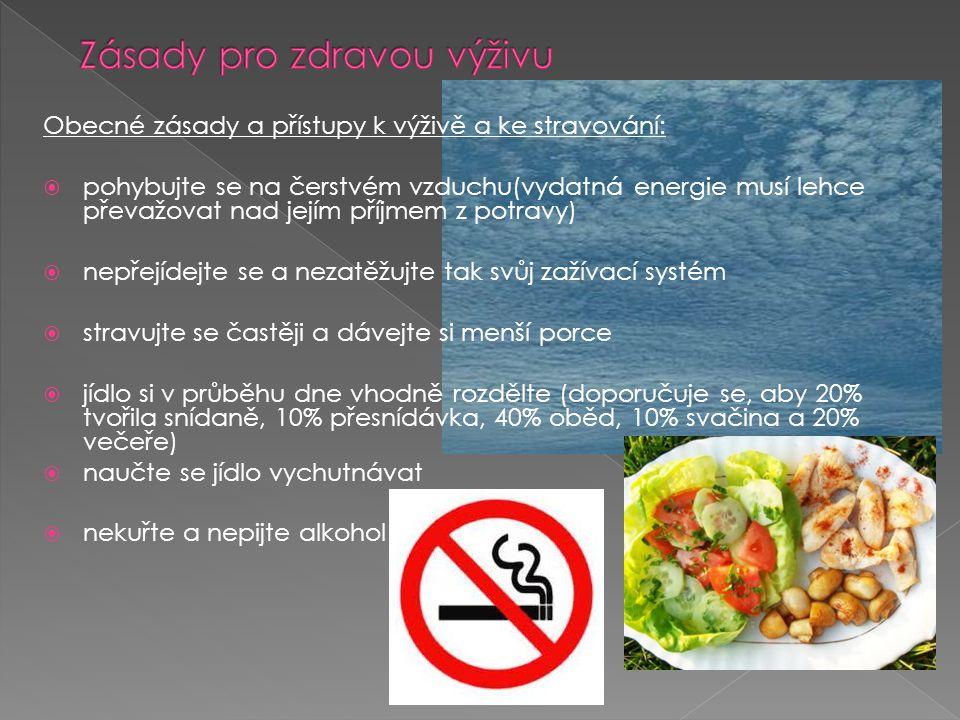 Zásady pro zdravou výživu