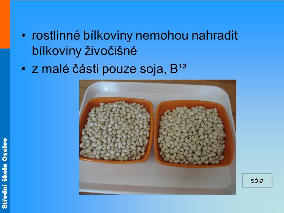 rostlinné bílkoviny nemohou nahradit bílkoviny živočišné