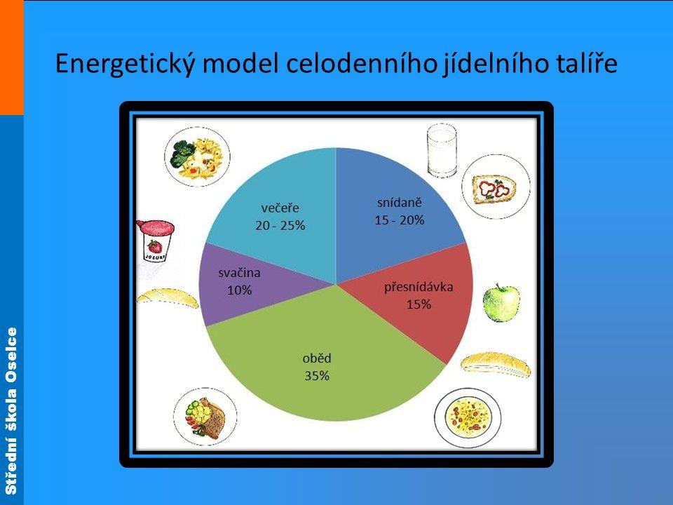Energetický model celodenního jídelního talíře