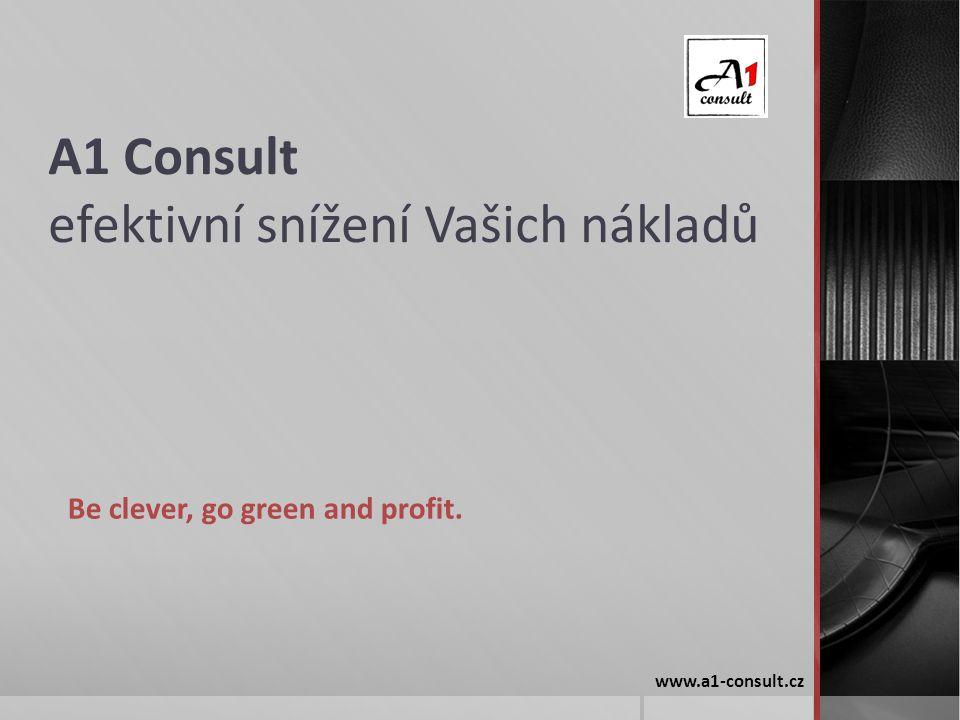 A1 Consult efektivní snížení Vašich nákladů
