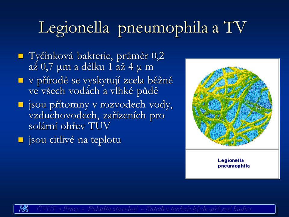 Legionella pneumophila a TV