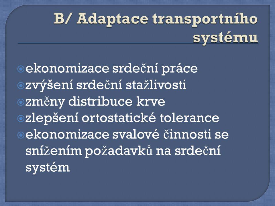 B/ Adaptace transportního systému