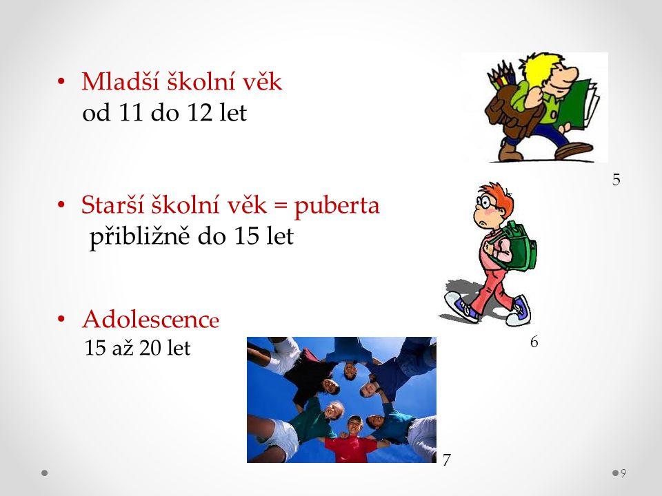 Starší školní věk = puberta přibližně do 15 let