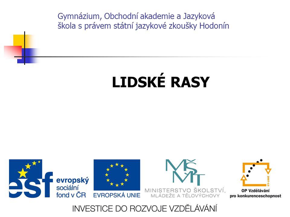 Gymnázium, Obchodní akademie a Jazyková škola s právem státní jazykové zkoušky Hodonín