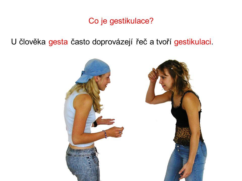 Co je gestikulace U člověka gesta často doprovázejí řeč a tvoří gestikulaci.