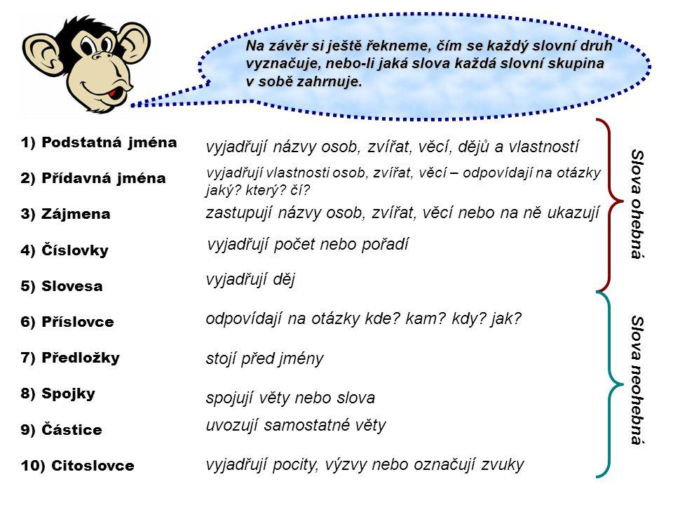 vyjadřují názvy osob, zvířat, věcí, dějů a vlastností