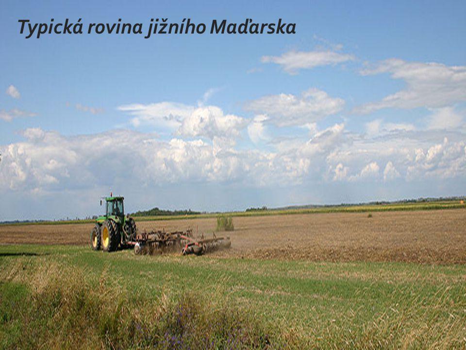 Typická rovina jižního Maďarska